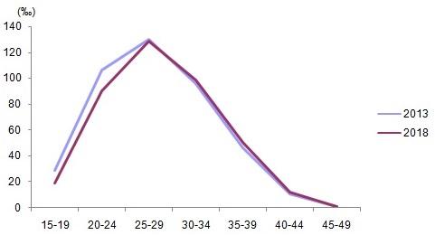 Yaşa özel doğurganlık hızı, 2013, 2018