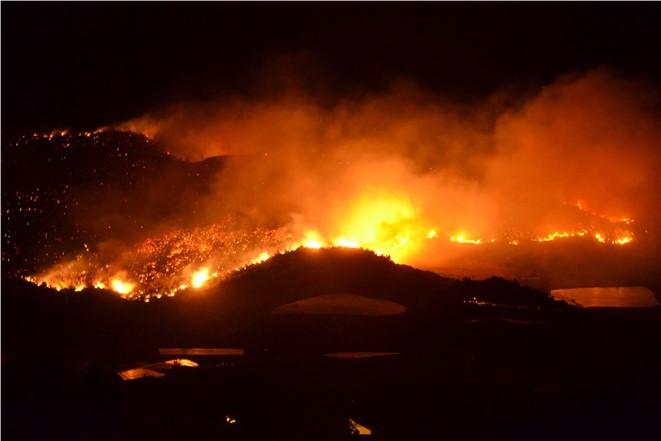 Anamur'da Kızılçam ve Makilik Alanda Orman Yangını