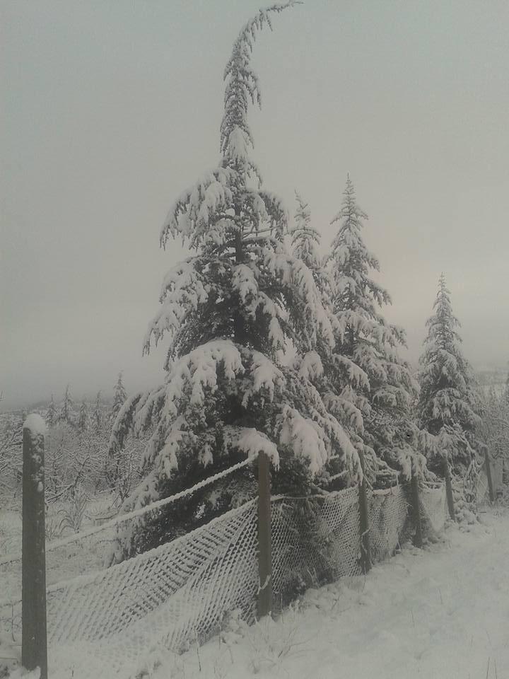 Mersin'in Yükseklerine Kar Yağdı