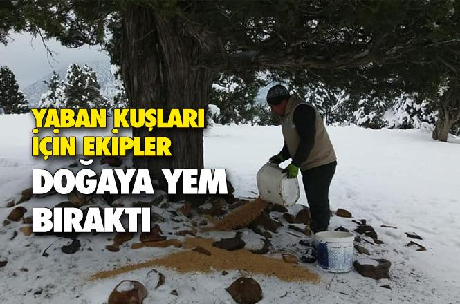 Karla Kaplı Dağlara, Yaban Hayvanları İçin Yem Bırakıldı