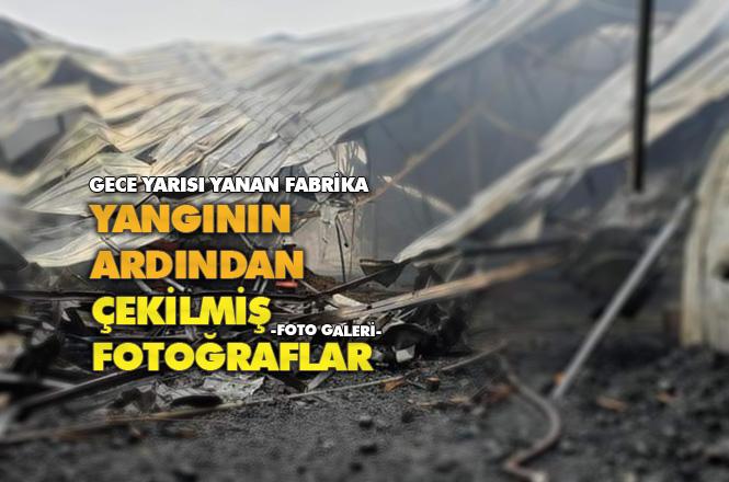 Mersin Tarsus Yenice'deki Narenciye Fabrikasında Yangından Sonra Çekilmiş Fotoğraflar