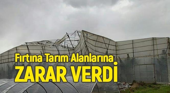 Mersin'in Anamur İlçesinde Etkili Olan Fırtına Tarım Alanlarına Zarar Verdi