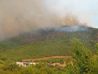 Mersin Orman Yangını (Gülnar - Büyükeceli)
