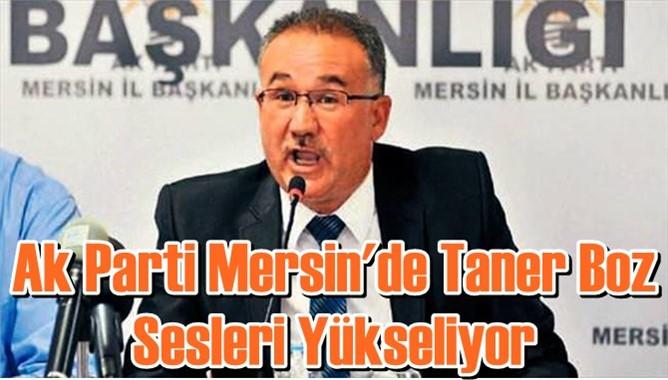 Ak Parti Mersin'de Taner Boz Sesleri Yükseliyor
