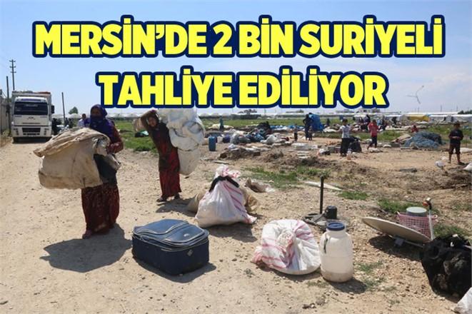 Suriyeliler Adanalıoğlu'dan tahliye ediliyor