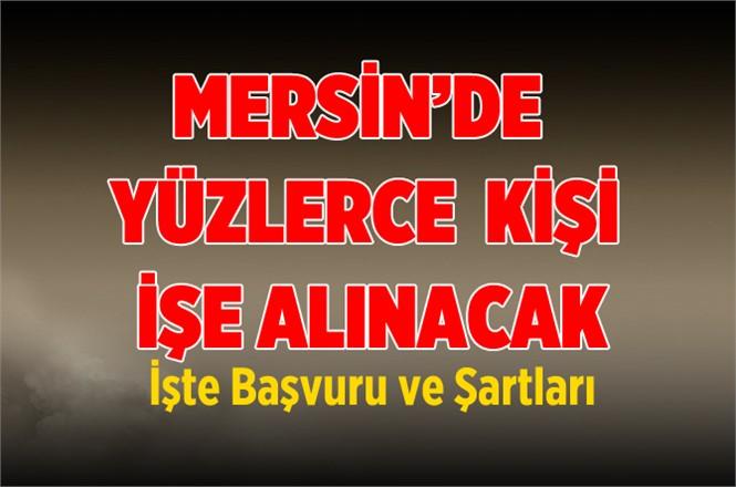 Mersin'de İŞKUR Çok Sayıda TYP İşçisi Alacak