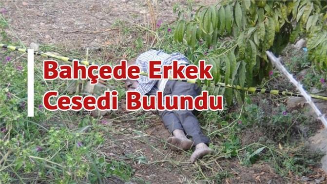 Erdemli'de Sır Ölüm, Mersin Erdemli İlçesinde Bir Bahçe'de Erkek Cesedi Bulundu