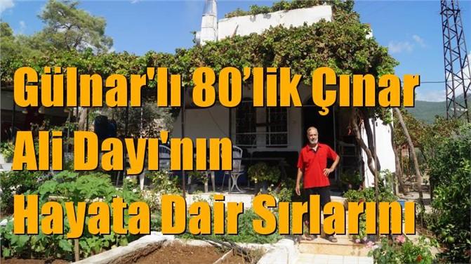 80'lik Çınar Ali Dayı'nın Hayata Dair Sırları