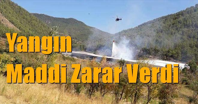 Mersin Bozyazı'da Yangın
