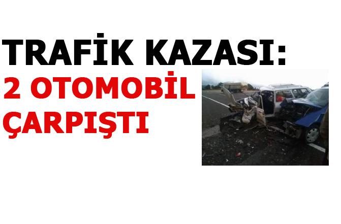 Mut'ta Trafik Kazası, 2 Otomobilin Çarpıştı