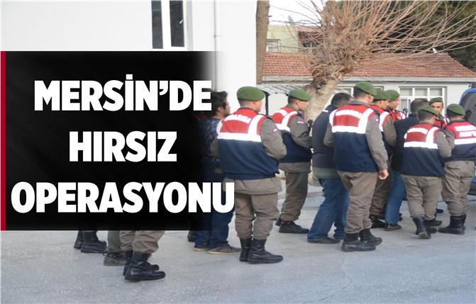Mersin'de Hayvan Hırsızlarına Operasyon