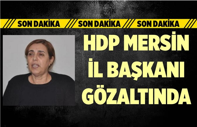 HDP Mersin İl Eşbaşkanı Gözaltına Alındı