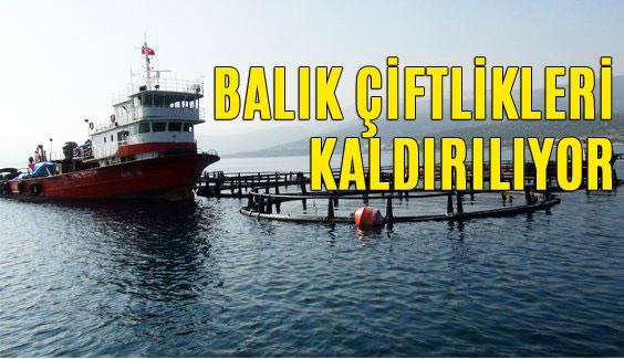 Mersin Sahillerindeki Balık Çiftlikleri Kaldırılıyor