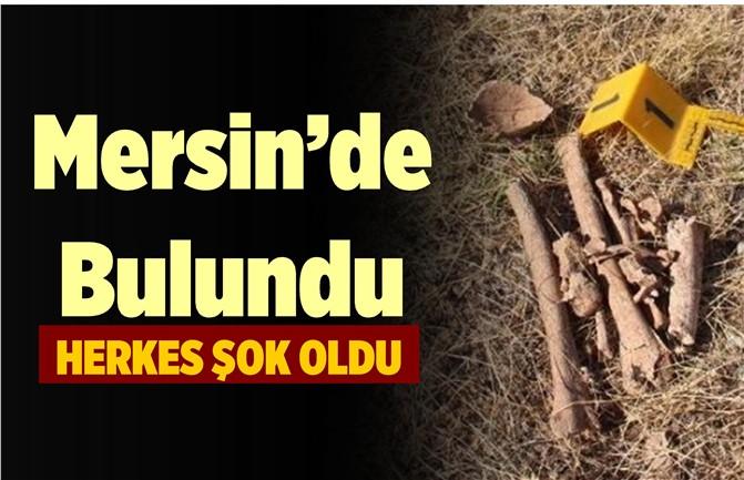 Mersin'de Kaybolan Şahısın Kemikleri Bulundu