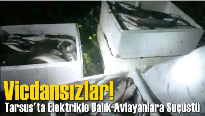 Tarsus'ta Elektrikle Balık Avlayanlara Suçüstü