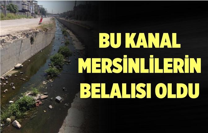 Mersin'in Tehlike Saçan Kanalı Gündemden Düşmüyor