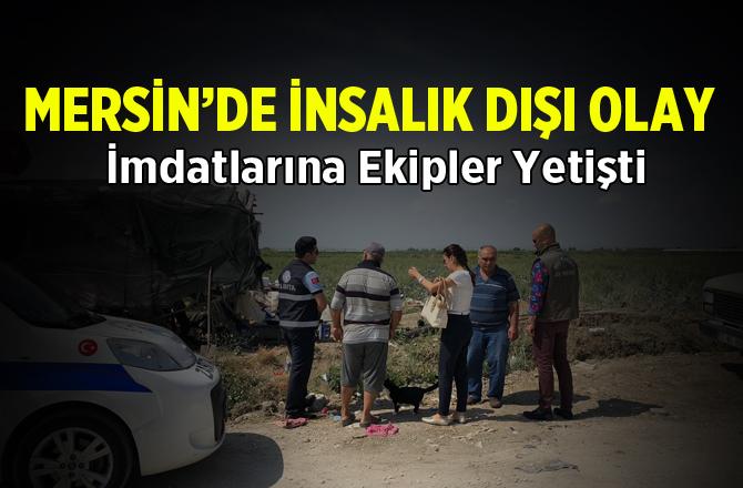Mersin'de İnsanlık Dışı Olay