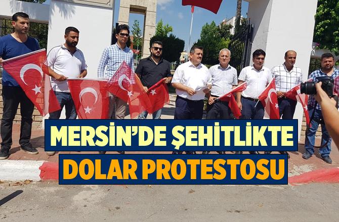 Mersin'de Şehitlikte Dolar Protestosu