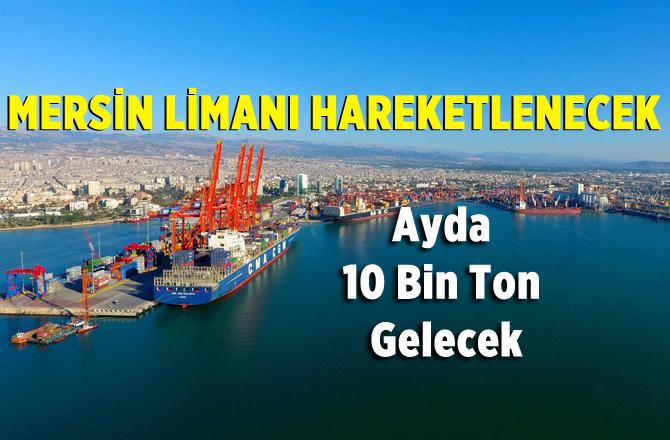 Kazakistan'dan Mersin Limanına Ticaret Hamlesi