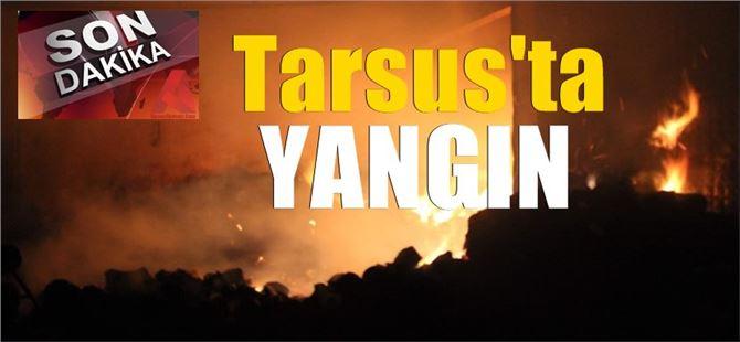 Mersin'de Gece Yarısı Pamuk İşleme Tesisinde Büyük Yangın