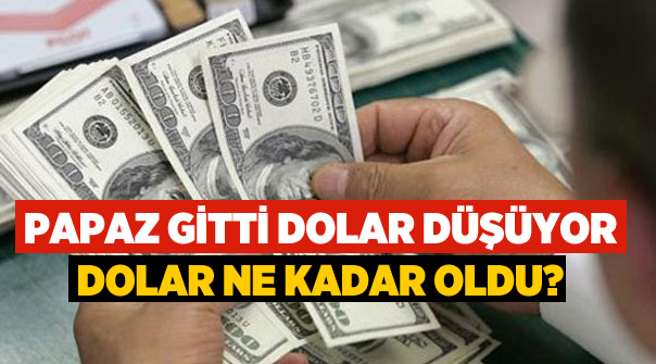 Bu Dolar Ne Kadar Oldu? Dolar Düşüyor mu? Bir Dolar Kaç TL Oldu?