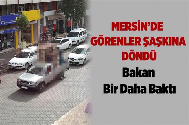 Mersin'de Görenleri Şaşkına Çeviren Görüntü! Bakan Bir Daha Baktı