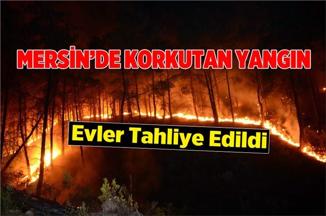 Mersin Anamur'da Ormanda Yangın Çıktı