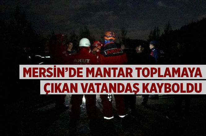 Mersin'in Mezitli İlçesi Demirışık Köyünde Mantar Toplamaya Çıkan Yaşlı Adam Kayboldu