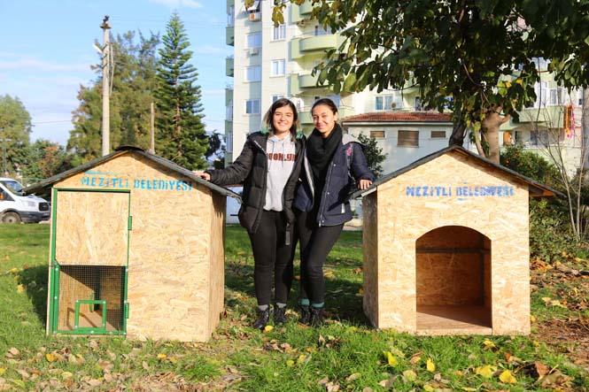 Harika Gençler! Mezitli'de Gençler Bileklik Örüp Sokak Hayvanlarına Yuva Yaptılar