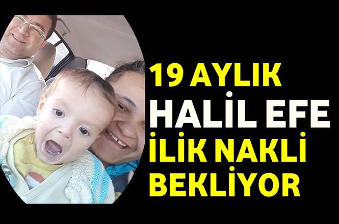 Mersin Bozyazı'da 19 Aylık Halil Efe İlik Nakli Bekliyor