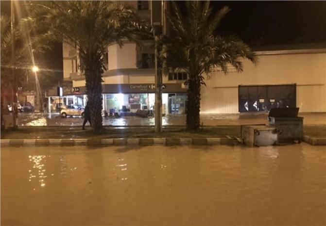 Mersin'de Fırtına Nedeniyle Ağaçlar Devrildi, Gemiler Karaya Oturdu ve Hayat Durma Noktasına Geldi