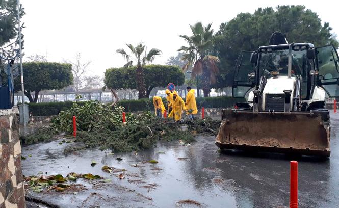 Fırtına Nedeniyle Akdeniz Belediyesi Teyakkuz Halinde!
