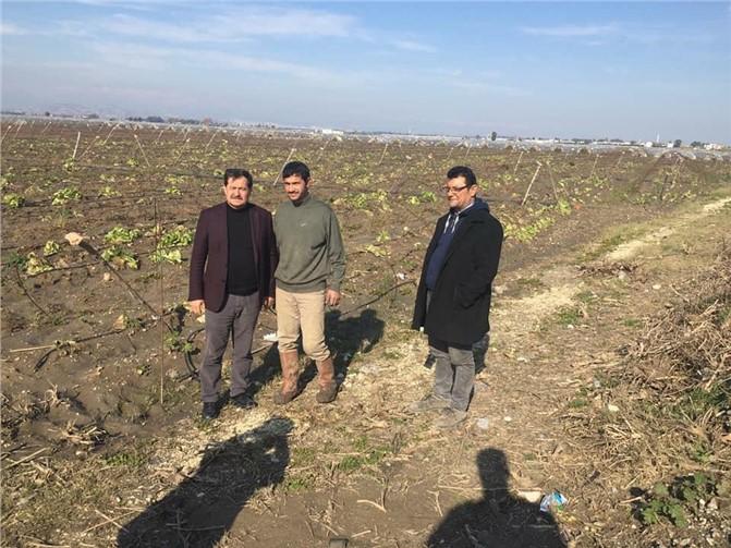 Abdullah Seki, Selden Zarar Gören Tarsuslu Çiftçileri Yalnız Bırakmadı