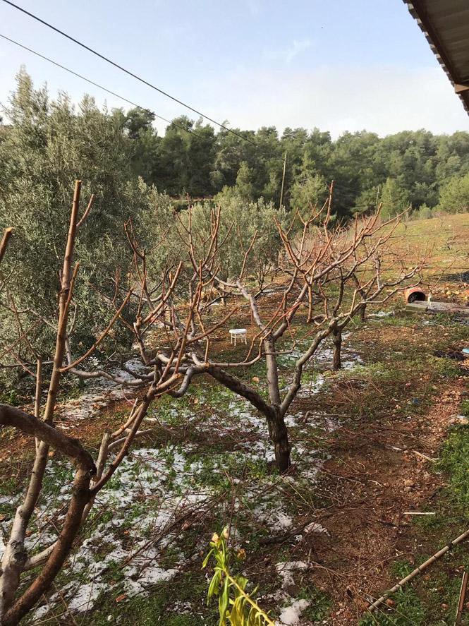 Başkan Tuna'nın, Hortum ve Dolu Felaketinde Zarar Gören Hemşehrilerine Geçmiş Olsun Mesajı