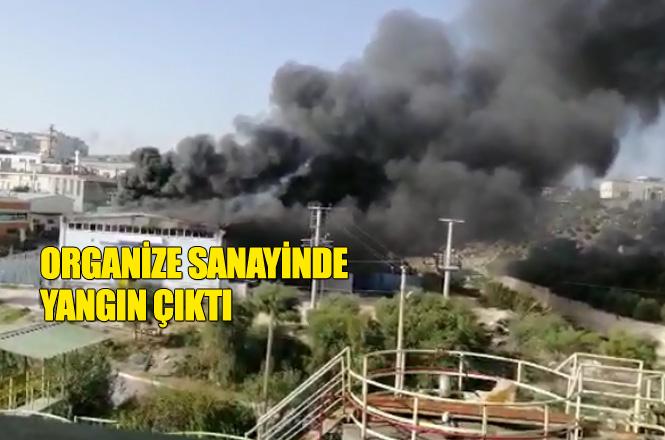 Mersin Tarsus Organize Sanayi Bölgesinde Yangın! Çakmak Fabrikasını Alevler Sardı