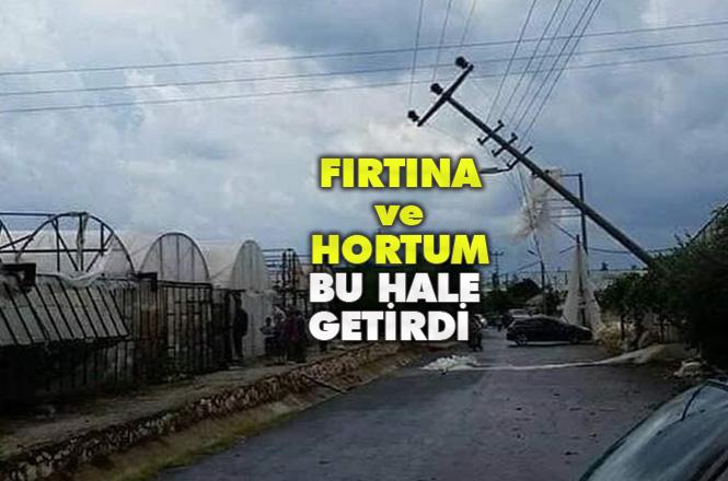 Mersin Erdemli'de Şiddetli Fırtına ve Hortum Felaketi Yaşandı! Erdemli Belediye Başkanı Tollu Bölgede