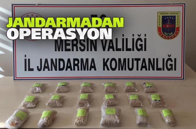 Mersin Yenişehir'de Jandarmanın Bir Eve Yaptığı Operasyonda 19 Bin 734 Adet Captagon Yaklandı