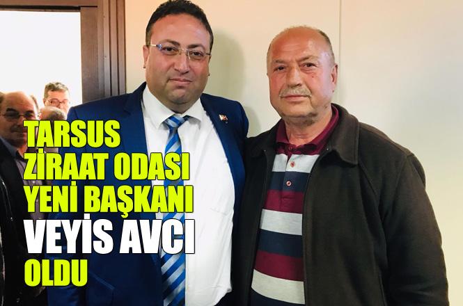 Tarsus Ziraat Odası Seçimi Tamamlandı Veyis Avcı 167 Oyun 93'ünü Alarak Kazandı