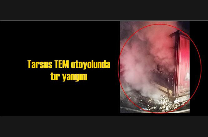 Mersin Tarsus Taşobası Mevkinde, TEM Otoyolu Pozantı Tarsus İstikametinde Seyir Halindeki Bisküvü Yüklü TIR Yanarak Küle Döndü
