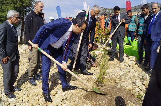 """""""Adalet Ormanı""""na Yeni Fidan Dikimi ve Fidanların Bakımı Yapıldı"""