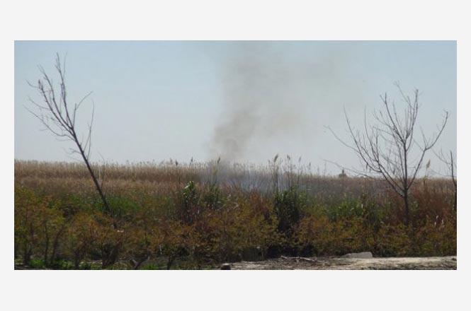 Mersin Silifke Sınırlarında Bulunan Göksu Deltası'nda Çıkan Yangın Kendiliğinden Söndü