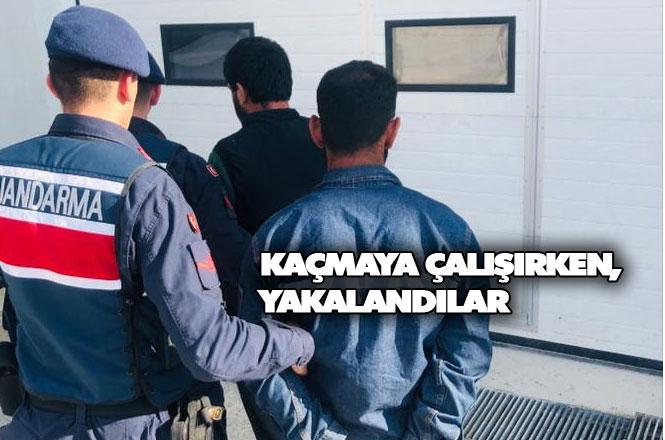 Çiftlikten Hırsızlık Yaparken Yakalanan Şahıslar Tutuklandı