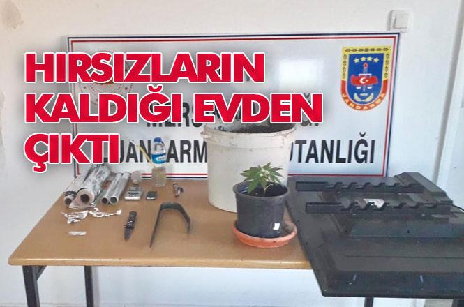 Mersin Erdemli'de Hırsızlık Şüphelilerinin Evine Yapılan Operasyonda Çalıntı Eşyalar ve Saksıya Dikilmiş Hint Keneviri Ele Geçirildi