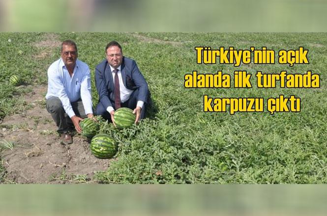 Mersin Tarsus Kulak Köyünde Açık Alanda Mayıs Ayında İlk Karpuzu Yetişti