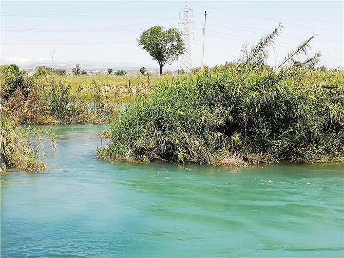 Önceki Gün Nehirde Bir Ceset Görüldüğü İhbarı Yapılmıştı, Mersin Tarsus'ta Berdan Nehri'nde Erkek Cesedi Bulundu