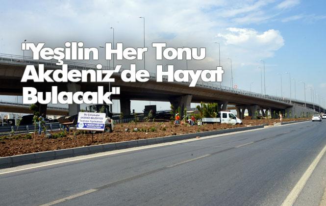 Akdeniz Belediyesi Park ve Bahçeler Müdürlüğü Ekipleri, Yeni Köprü Etrafında Peyzaj Çalışmasına Başladı