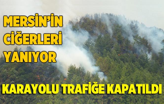 Mersin Silifke'de Orman Yangını Karayolunu Trafiğe Yolunu Kapattı