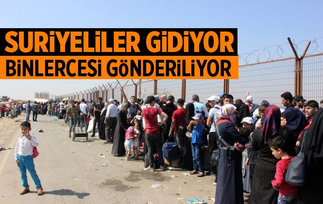 Binlerce Suriyeli Ülkelerine Geri Gönderiliyor