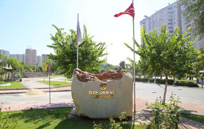 Mersin Mezitli'deki 500 Yıllık Anıt Ağaç Zeytin Verdi