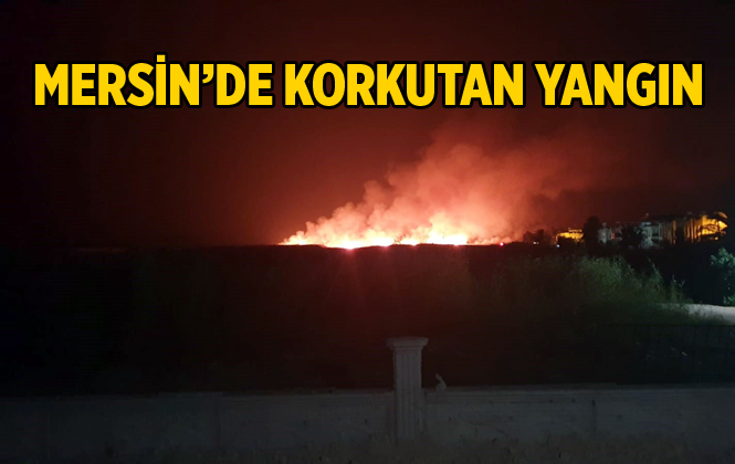 Mersin Silifke'de Ki Yangın Yaşam Alanlarını Tehdit Etti
